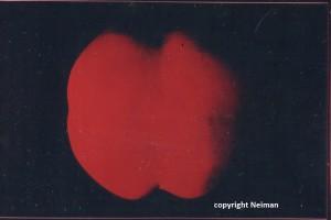 sérigraphie 1967